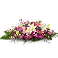 핑크장미계절꽃혼합 사방화6호